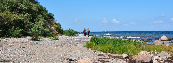 Natur pur an der Ostsee