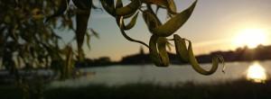 Wellness an der mecklenburgischen Ostseekueste