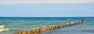 Urlaub an der Ostsee Heiligendamm