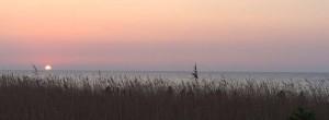 Urlaub in Heiligendamm Tipps für die Ostsee