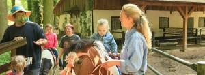 Ponyreiten im Familientierpark Wolgast