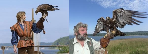 Die Adler sind in das Stück über Klaus Störtebeker integriert, haben aber auch ihre eigenen Show!