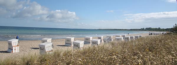 Strandkörbe am Strand von Boltenhagen