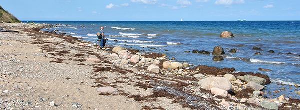 Raue See am Strand von Boltenhagen